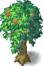 Fruit_tree03.png