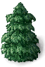 pine.png