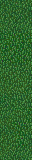Crushsgrass-lesssaturation.png